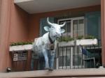 バルコニー牛
