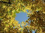 秋のポツダム 3