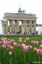 Brandenburger Tor (ブランデンブルク門) 3