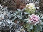 ドイツの冬 5